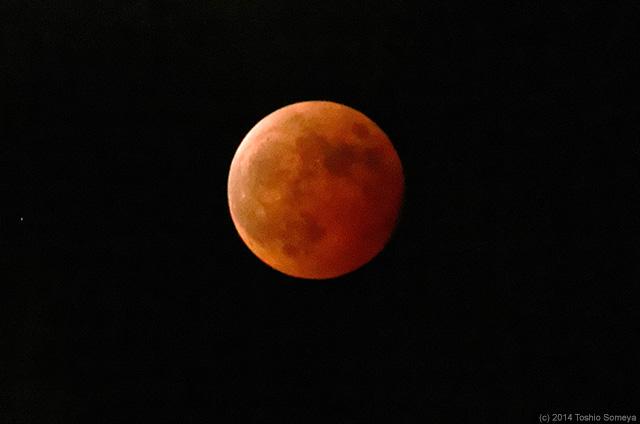 東の空に赤い月