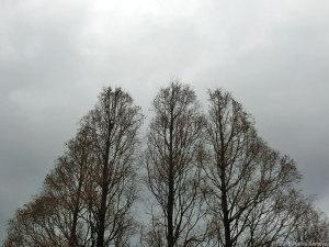 正月の空、息切れ