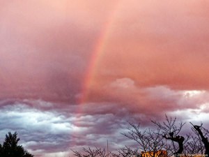 師走の空にかかる虹