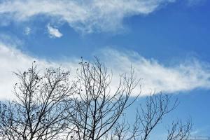 流れる冬雲