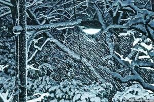 横殴りの雪