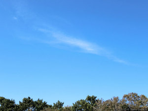 台風一過の青空の下