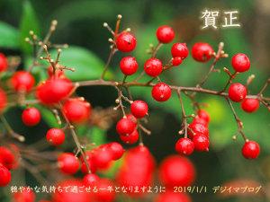 新年のご挨拶・デジイマブログ