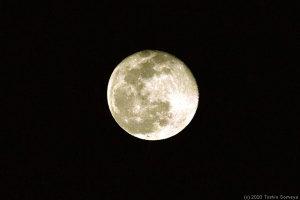 東の空に浮かぶ月