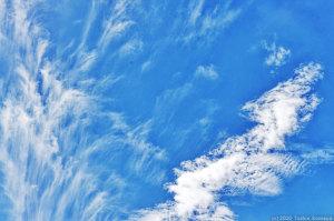 秋型の軽快な雲