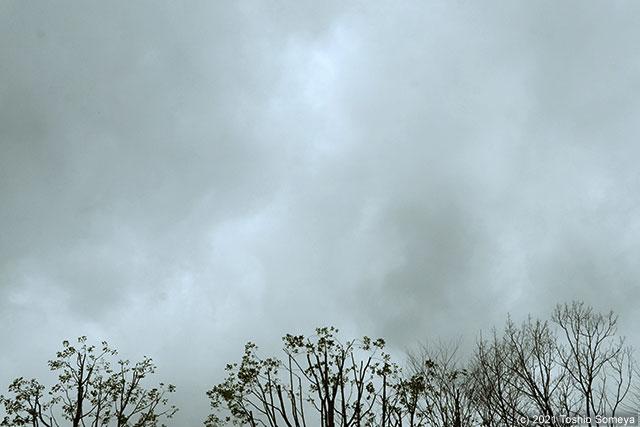 こんな空も・・