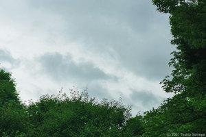 空模様が気になる