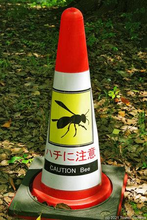 CAUTION Bee!