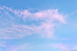 優しい表情の雲