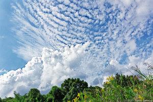 夏の雲と秋の雲が混在していた