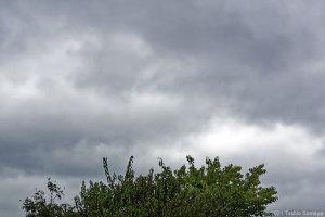 今日も冴えない空が・・
